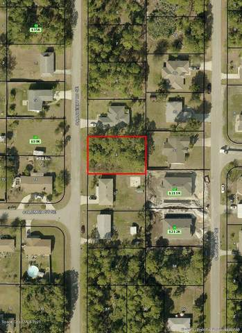 1043 Cranberry Road SE, Palm Bay, FL 32909 (MLS #869123) :: Premium Properties Real Estate Services