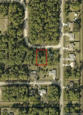414 Sayre Road SW, Palm Bay, FL 32908 (MLS #869124) :: Premium Properties Real Estate Services
