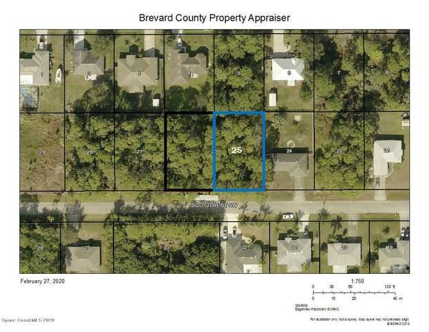 1267 Scottish Street SW, Palm Bay, FL 32908 (MLS #869168) :: Premier Home Experts