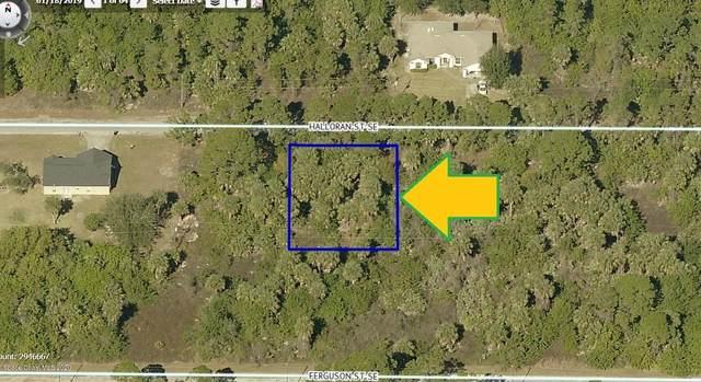 160 Halloran Street SE, Palm Bay, FL 32909 (MLS #869312) :: Premier Home Experts
