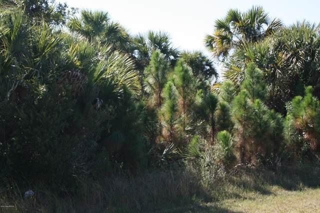 769 Treasure Cove Street SW, Palm Bay, FL 32908 (MLS #869338) :: Premier Home Experts