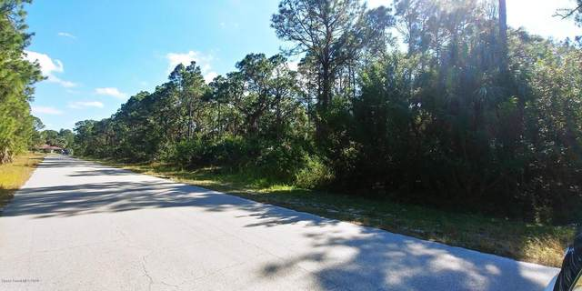 534 Lang Road SW, Palm Bay, FL 32908 (MLS #869909) :: Blue Marlin Real Estate