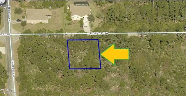 490 Fellenz Street SW, Palm Bay, FL 32908 (MLS #872333) :: Blue Marlin Real Estate