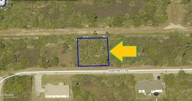 569 Fountain Street SW, Palm Bay, FL 32908 (MLS #872334) :: Blue Marlin Real Estate