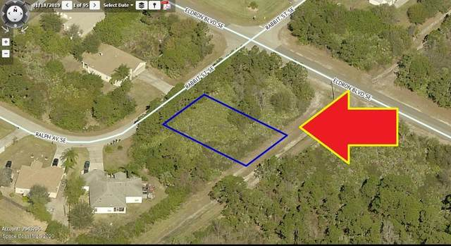 1164 Rabbit Street SE, Palm Bay, FL 32909 (MLS #872567) :: Premium Properties Real Estate Services
