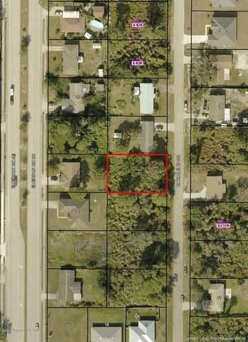 850 Carlyle Avenue SE, Palm Bay, FL 32909 (MLS #874354) :: Armel Real Estate