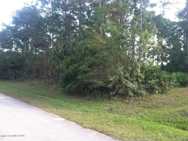 1651 Hayworth Circle NW, Palm Bay, FL 32907 (MLS #874803) :: Blue Marlin Real Estate