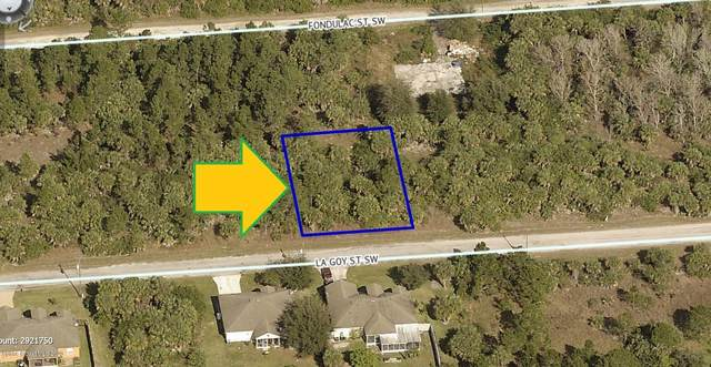 551 La Goy Street SW, Palm Bay, FL 32908 (MLS #877010) :: Engel & Voelkers Melbourne Central