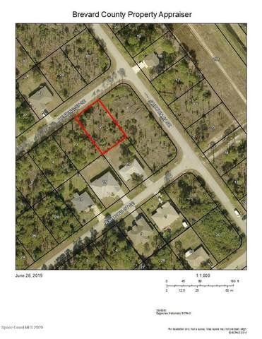 884 Reading Street SE, Palm Bay, FL 32909 (MLS #878493) :: Premium Properties Real Estate Services