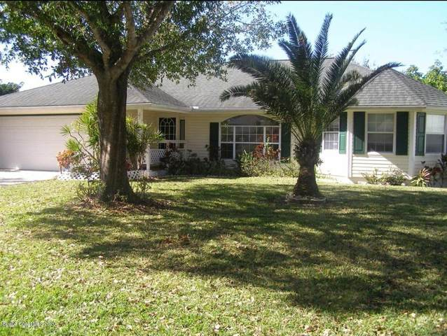 1002 Citrus Avenue NE, Palm Bay, FL 32905 (MLS #879416) :: Blue Marlin Real Estate