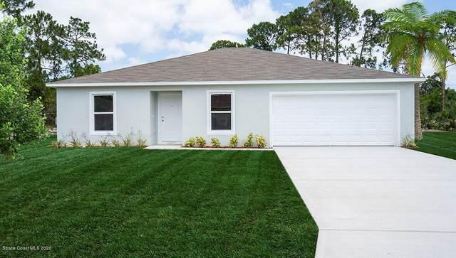 802 SE Carlyle Avenue SE, Palm Bay, FL 32909 (MLS #879726) :: Armel Real Estate