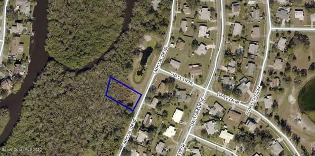 980 Cadillac Drive NE, Palm Bay, FL 32905 (MLS #880137) :: Coldwell Banker Realty