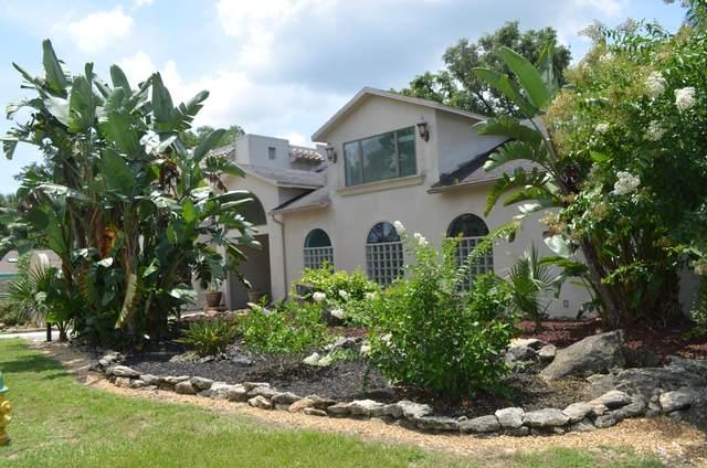 19 Floridelphia Avenue, Rockledge, FL 32955 (MLS #880267) :: Blue Marlin Real Estate