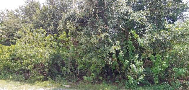 558 Poplar Street SE, Palm Bay, FL 32909 (MLS #880281) :: Premium Properties Real Estate Services