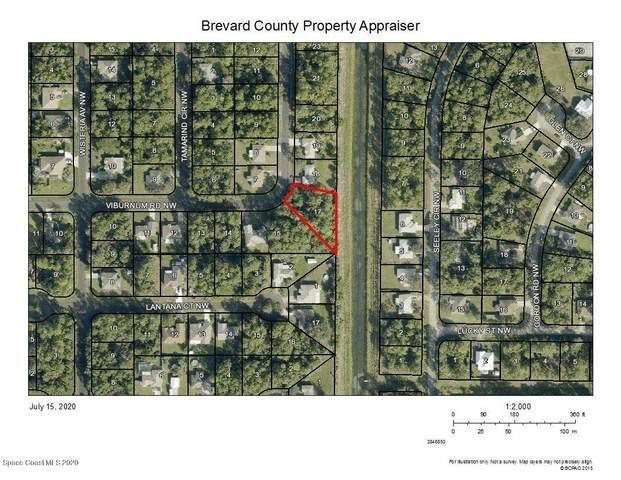 301 Tamarind Circle NW, Palm Bay, FL 32907 (MLS #880440) :: Blue Marlin Real Estate