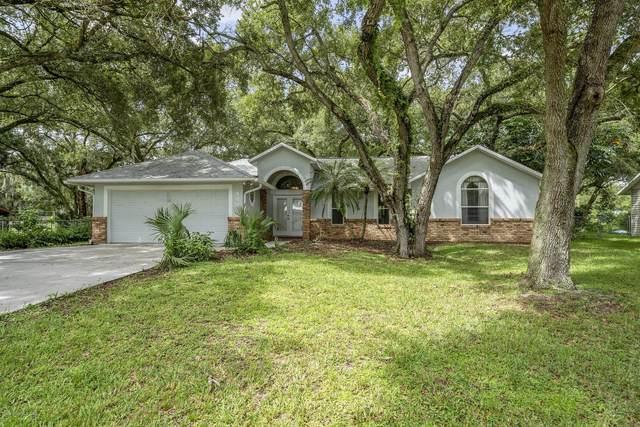 442 Petal Road NE, Palm Bay, FL 32907 (MLS #881498) :: Premium Properties Real Estate Services