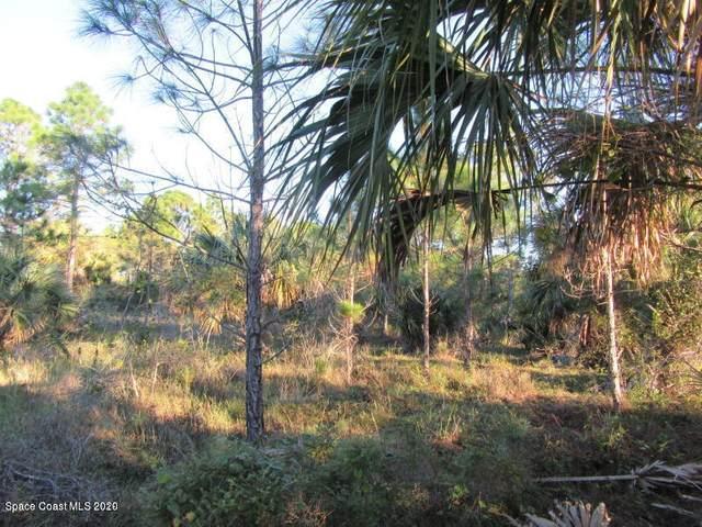 3135 Gosho Avenue SW, Palm Bay, FL 32908 (MLS #882051) :: Coldwell Banker Realty