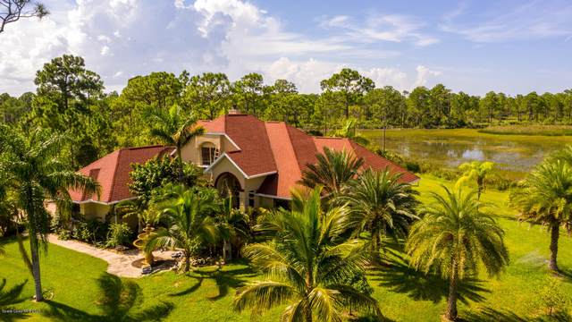 1460 Grant Road, Grant Valkaria, FL 32949 (MLS #882521) :: Coldwell Banker Realty