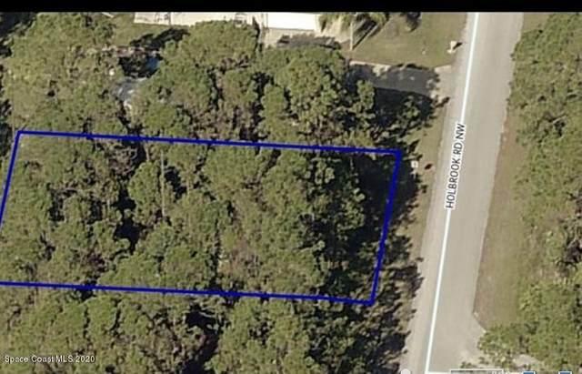 1880 Holbrook Road NW, Palm Bay, FL 32907 (MLS #882940) :: Blue Marlin Real Estate