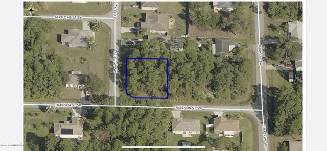 000 Unknown, Palm Bay, FL 32908 (MLS #882946) :: Engel & Voelkers Melbourne Central