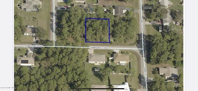 285 Harrison Street SW, Palm Bay, FL 32908 (MLS #882947) :: Engel & Voelkers Melbourne Central