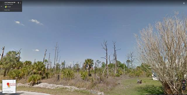 501 Octavius Road SW, Palm Bay, FL 32908 (MLS #883664) :: Premier Home Experts