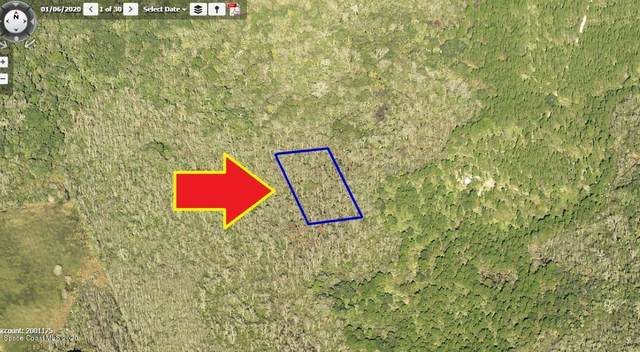 00000 No Access West Of Meadow Green Road, Mims, FL 32754 (MLS #883687) :: Engel & Voelkers Melbourne Central