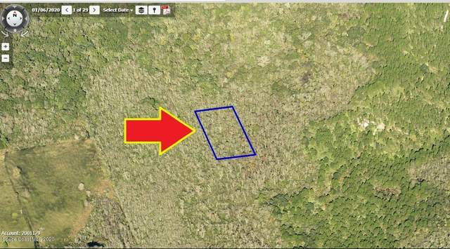00000 No Access West Of Meadow Green Road, Mims, FL 32754 (MLS #883688) :: Engel & Voelkers Melbourne Central