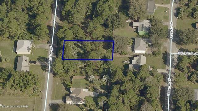 449 Wells Avenue SW, Palm Bay, FL 32908 (MLS #883704) :: Blue Marlin Real Estate