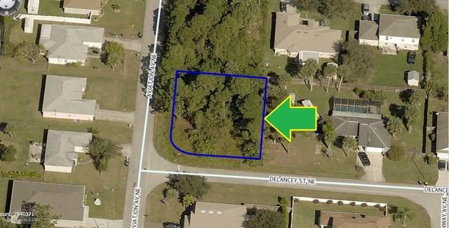 111 Corner Lot On Delancey Street NE, Palm Bay, FL 32907 (MLS #883785) :: Blue Marlin Real Estate