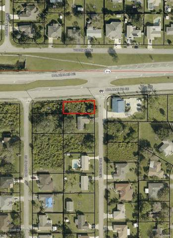 106 Lehigh ( Corner Of Malabar), Palm Bay, FL 32909 (MLS #883930) :: Armel Real Estate