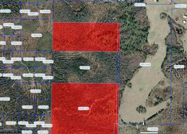 0 S Fork Ranch Road, Clermont, FL 34711 (MLS #884097) :: Engel & Voelkers Melbourne Central