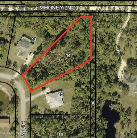 4552 Hunters Run Circle, Grant Valkaria, FL 32949 (MLS #884388) :: Coldwell Banker Realty