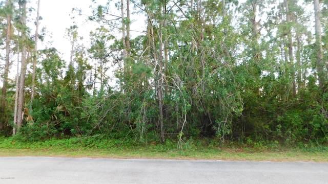 1336 Schneider Street SW, Palm Bay, FL 32908 (MLS #884581) :: Engel & Voelkers Melbourne Central