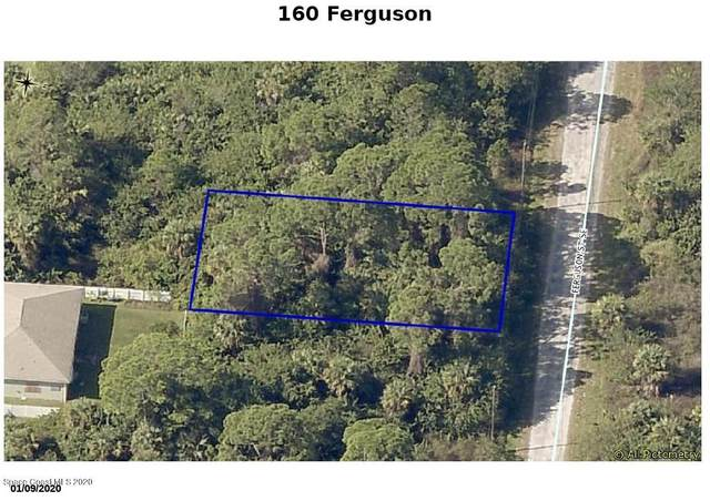 160 Ferguson Street SE, Palm Bay, FL 32909 (MLS #884627) :: Blue Marlin Real Estate