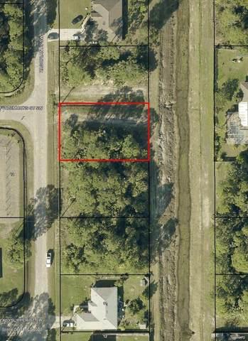 2431 Hagoplan Avenue SW, Palm Bay, FL 32908 (MLS #884669) :: Premier Home Experts