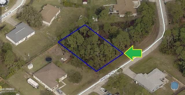 3164 Wendel Road SE, Palm Bay, FL 32909 (MLS #884781) :: Coldwell Banker Realty