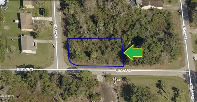 991 Taft Avenue SE, Palm Bay, FL 32909 (MLS #884784) :: Blue Marlin Real Estate