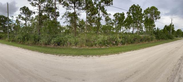 Not Assign Govan Avenue, Malabar, FL 32950 (MLS #884993) :: Engel & Voelkers Melbourne Central
