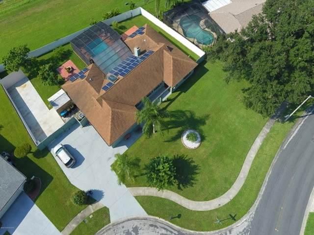 1554 Meadowbrook Road NE, Palm Bay, FL 32905 (MLS #885026) :: Blue Marlin Real Estate