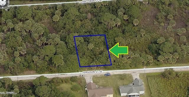 199 Ferguson Street SE, Palm Bay, FL 32909 (MLS #885202) :: Blue Marlin Real Estate