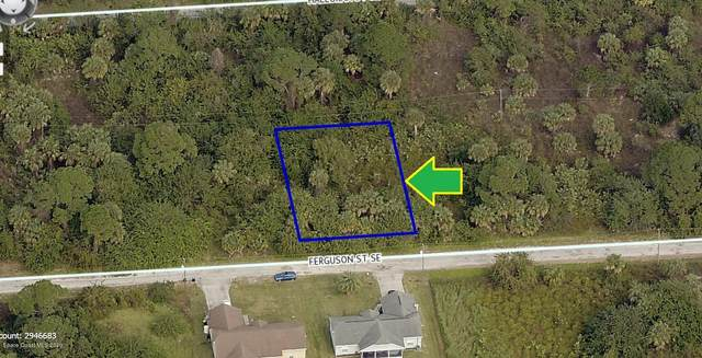 201 Ferguson Street SE, Palm Bay, FL 32909 (MLS #885203) :: Blue Marlin Real Estate
