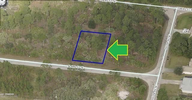 487 Alamo Street SE, Palm Bay, FL 32909 (MLS #885275) :: Blue Marlin Real Estate