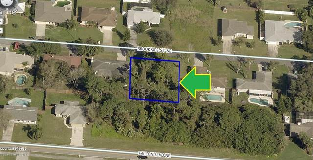 1796 Brookside Street NE, Palm Bay, FL 32907 (MLS #885276) :: Blue Marlin Real Estate