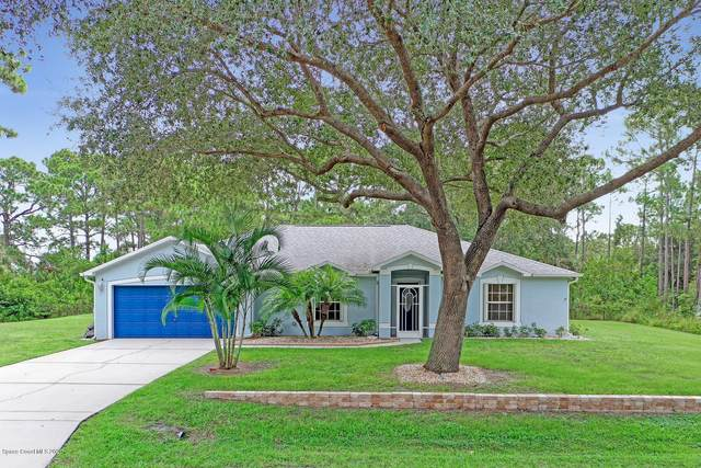 113 Santa Rosa Avenue SW, Palm Bay, FL 32908 (MLS #885326) :: Blue Marlin Real Estate