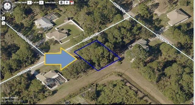 1090 Tetzel Street SE, Palm Bay, FL 32909 (MLS #885495) :: Premium Properties Real Estate Services