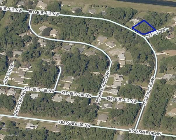 1701 Red Bud Circle NW, Palm Bay, FL 32907 (MLS #885508) :: Blue Marlin Real Estate