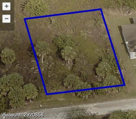 227 La Gore Street SW, Palm Bay, FL 32908 (MLS #885517) :: Blue Marlin Real Estate