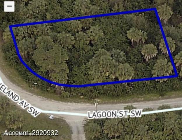000 Lakeland And Lagoon Corner Lot SW, Palm Bay, FL 32908 (MLS #885518) :: Blue Marlin Real Estate
