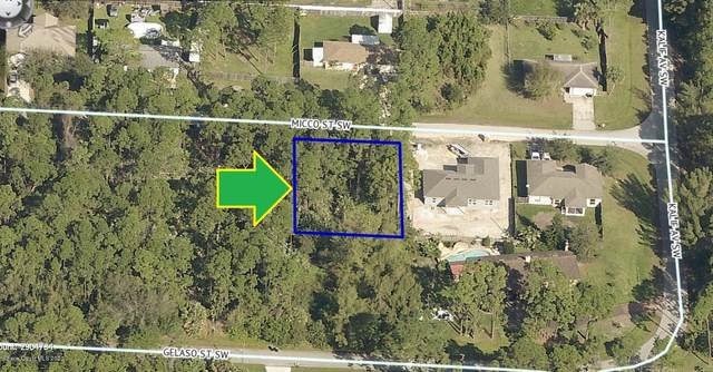 716 Micco Street SW, Palm Bay, FL 32908 (MLS #885585) :: Engel & Voelkers Melbourne Central